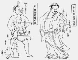 経絡図(例)